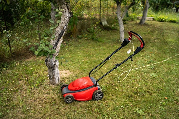 can you strim wet grass with electric strimmer