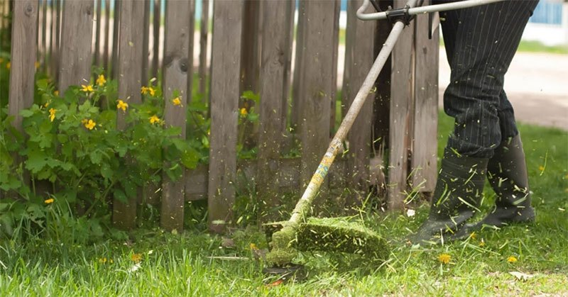Best 4 Cycle Trimmer – Ways to Clean Your Lawn At Ease